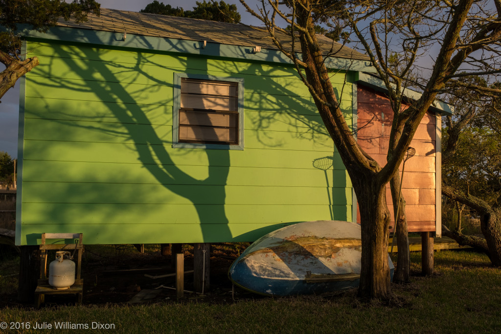 blue boat, green building, tree shadow